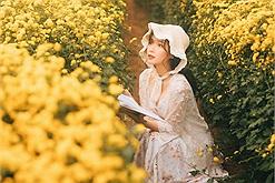 Nếu vườn cúc họa mi đông quá thì mình ghé vườn cúc chi gần Hà Nội đang nở vàng rực cả một góc trời