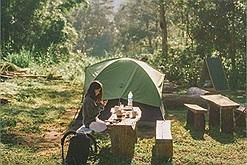 """Đi trốn thế gian ở 3 khu cắm trại giữa rừng đẹp """"đỉnh của chóp"""" đang gây sốt gần đây"""