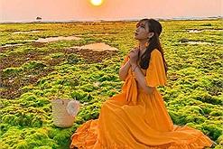 """Nhuộm newfeed đẹp như """"ở bển"""" trên Cánh đồng rong biển ở Ninh Thuận"""