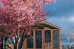 Xác định tọa độ ngôi làng đẹp như Tây Tạng đang được phủ hồng sắc hoa anh đào ở vùng ngoại ô Đà Lạt