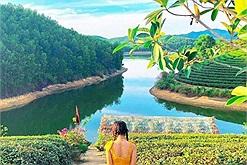 """Nghệ An đi đâu: Một """"ốc đảo"""" chè giữa đập nước đẹp lụi tim ở Nghệ An mà không phải ai cũng biết"""