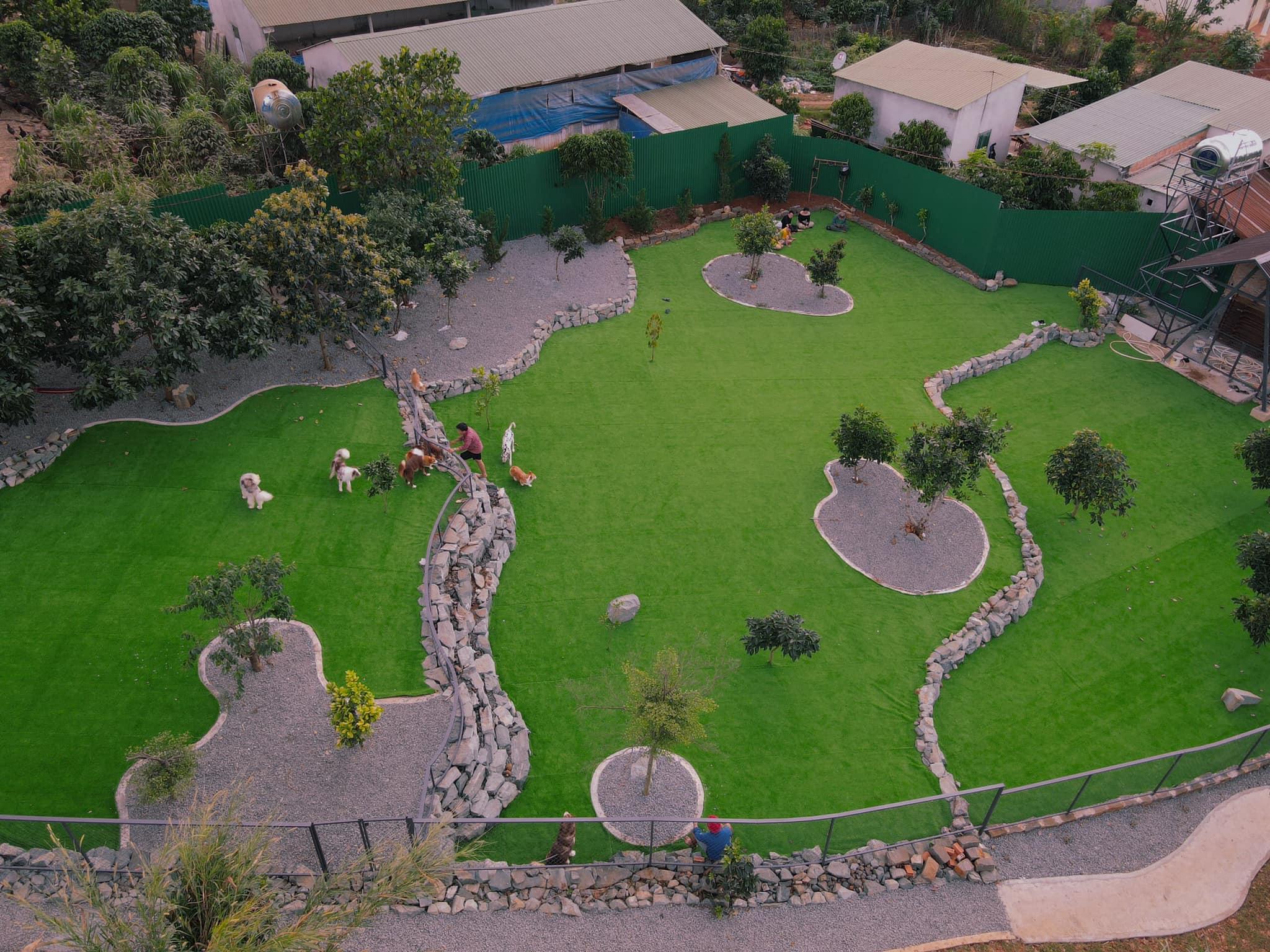 Black Rock Garden