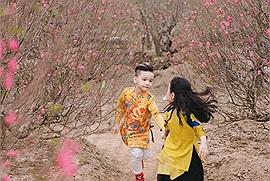 Chơi Tết: Giới trẻ lên đồ đi chụp ảnh Tết ở những vườn hoa đẹp nức tiếng Hà thành ngay thôi, hoa đã bắt đầu nở rộ rồi đấy!
