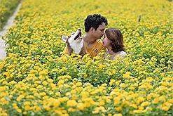 Chơi Tết: Ghé vườn hoa lớn nhất, đẹp nhất Tiền Giang làm bộ ảnh đón năm mới nào!