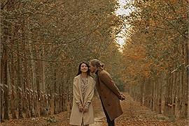 Về Bình Dương ngắm rừng cao su vào mùa thay lá lãng mạn như phim Hàn