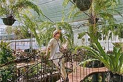 Chơi Tết: Check-in lẹ Khu vườn nhiệt đới xịn sò như Singapore vừa mới xuất hiện ở Đà Lạt