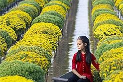 Chơi Tết: Đến làng hoa Sa Đéc mùa này bạn sẽ chọn đi dạo giữa những vườn hoa hay ngồi thuyền xuôi dòng nước ngắm hoa