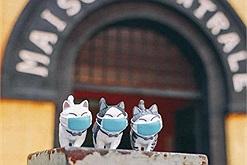 """""""Hội nhà mèo"""" đu trend làm chuyến tham quan Nhà tù Hỏa Lò mà tinh thần chống dịch cũng đầy đủ lắm!"""