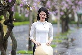 """Những ngày tháng 2, Hà Nội như """"mượn"""" mùa ban tím phớt """"tỏ tình"""" với lòng người"""