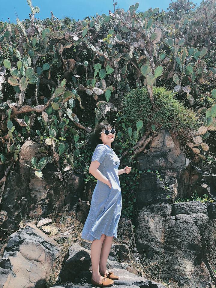 rặng xương rồng ở Tuy Hóa