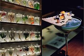 Thẩm rượu giữa một bảo tàng thiên nhiên ở Bo/en Cocktail Atelier chỉ 150K