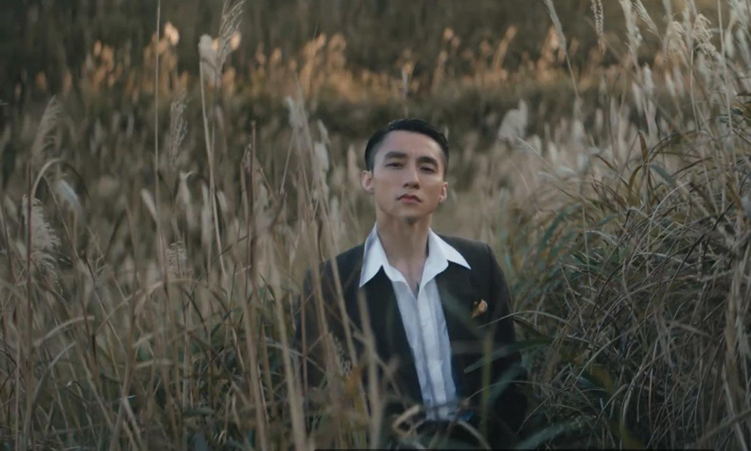 Cánh đồng cỏ lau Bình Liêu