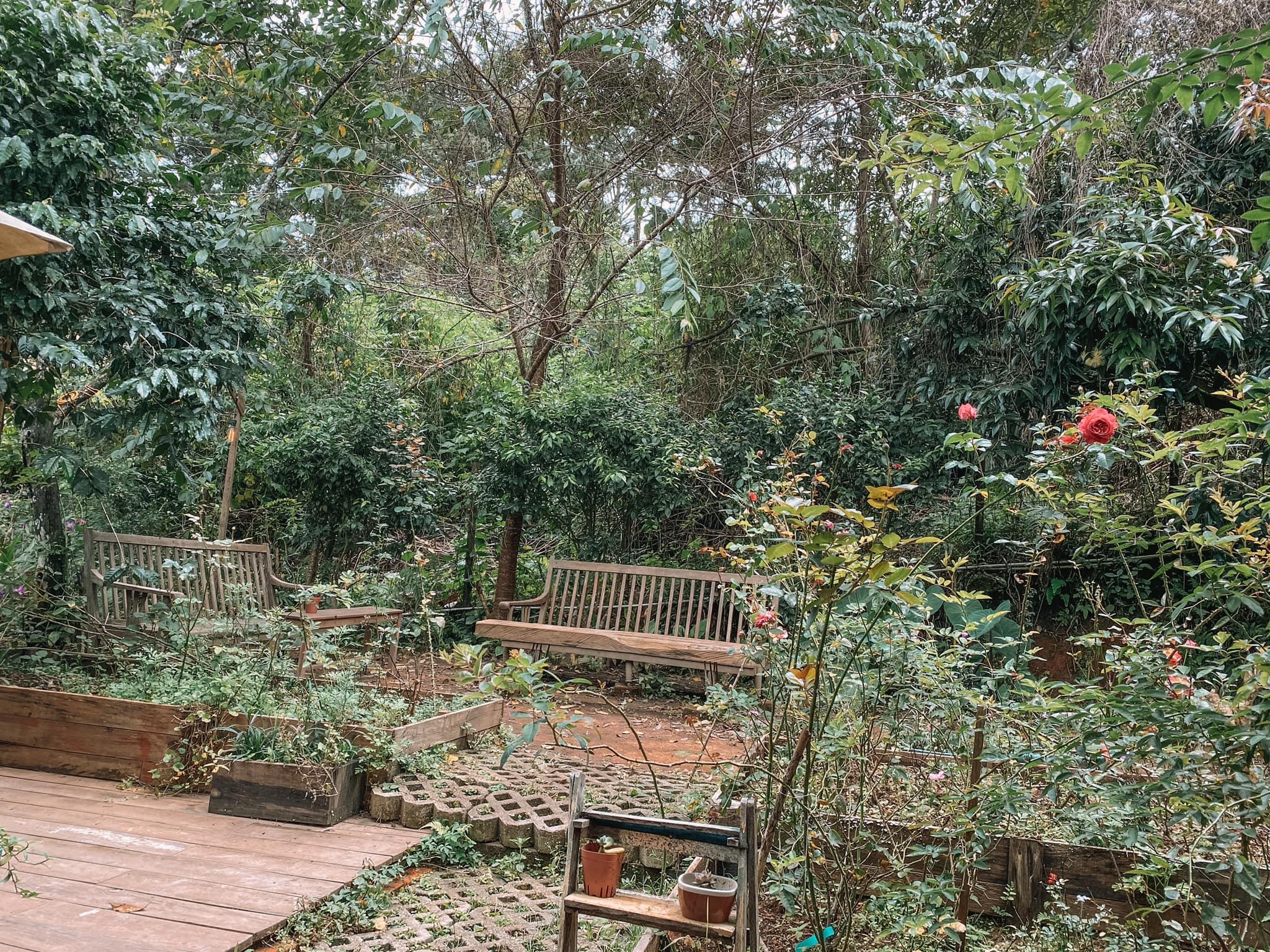 khu vườn mùa hè đà lạt