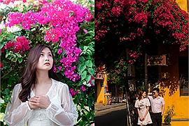 """Mùa hoa giấy đang nở rộ ở khắp miền nước Việt khiến người ta chỉ muốn hóa """"nàng thơ"""" dưới giàn hoa rực rỡ"""