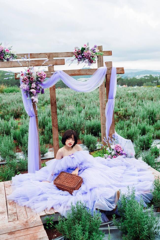 Lavender Túi thương nhớ cực nhiều góc sống ảo