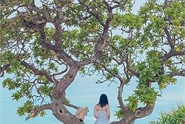 Checkin-holic 2: Lý Sơn, thiên đường biển đảo