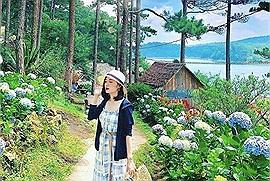 """Khu du lịch sinh thái Đá Tiên - nơi có """"con đường hoa đẹp nhất Đà Lạt"""" mà các tour du lịch Đà Lạt không thể bỏ qua"""