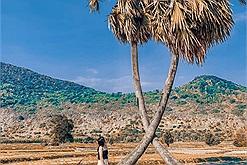 """Theo chân thổ địa 1 ngày khám phá Tây Ninh để thấy """"vùng đất Thánh"""" không thiếu chỗ lên hình đẹp như tạp chí!"""