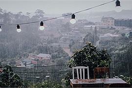 Du lịch Đà Lạt mùa mưa có những nơi nhất định phải đi và những việc nhất định phải làm