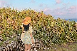 Phú Quý càng ngắm càng muốn đi, xem lịch trình 4N3Đ chỉ hết hơn 3 triệu của cô bạn Tường Vân chỉ muốn lao ngay ra đảo