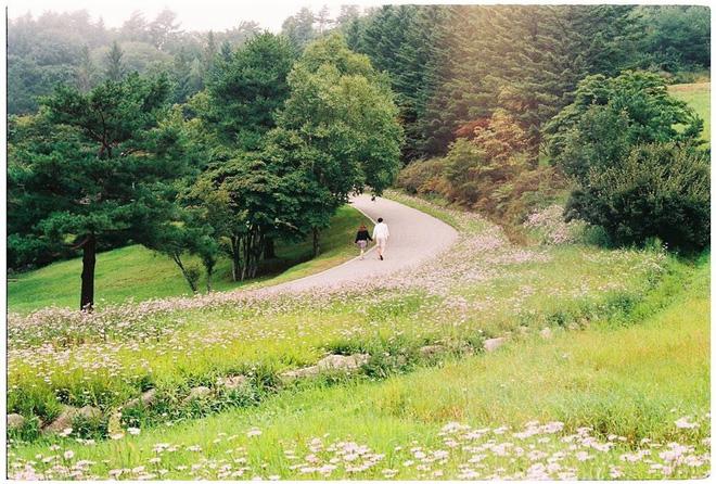Những bức ảnh đẹp như phim của Tuấn Anh