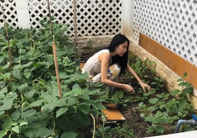 Thủy Tiên tiết lộ nhà cô hiếm khi phải đi chợ vì thịt cá được gửi từ quê lên, còn rau xanh cần loại nào là chỉ cần ra vườn hái.
