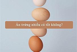 Ăn trứng nhiều có tốt không? Tại sao người Việt Nam luôn hạn chế các món ăn từ trứng cho con trẻ?