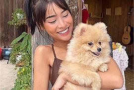 Đi Đà Lạt nhưng lại nhớ pet thì phải đến ngay 5 quán cafe chỉ có các em cún siêu dễ thương
