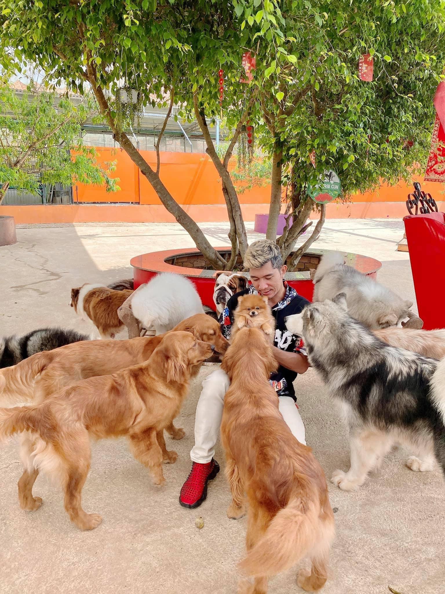 Nông trại cún Puppy Farm