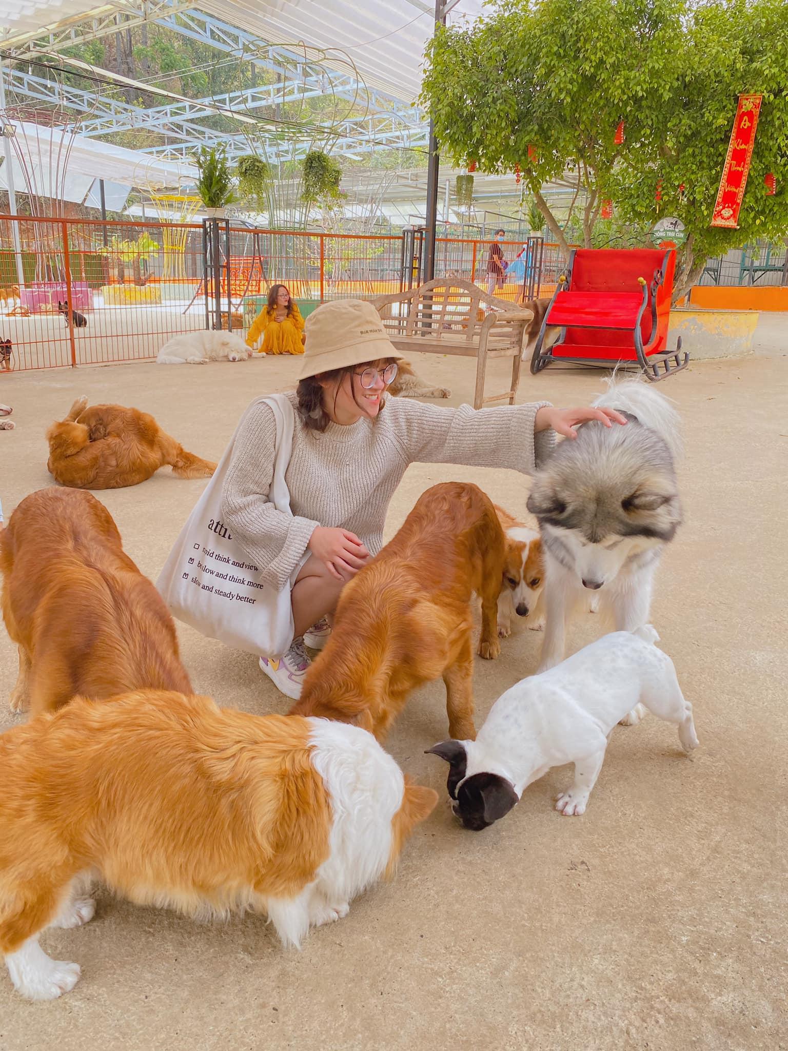 các boss tại Nông trại cún Puppy Farm