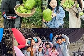Gia đình Lý Hải rủ nhau đi tránh dịch ở Đà Lạt, trồng rau, nuôi gà tại nông trại chill chill