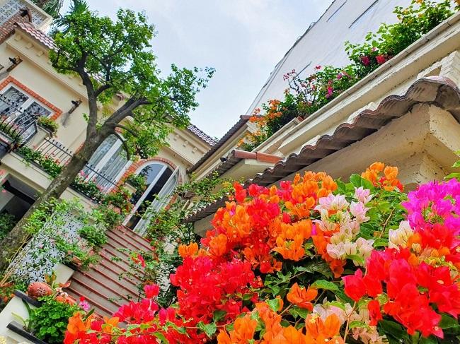 vườn hoa trong nhà sau cải tạo