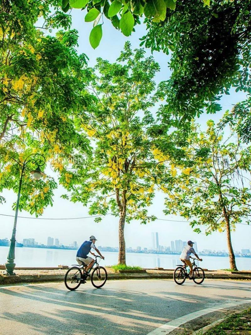 20 điều nhất định phải làm ở Hà Nội khi mùa cô vy đi qua