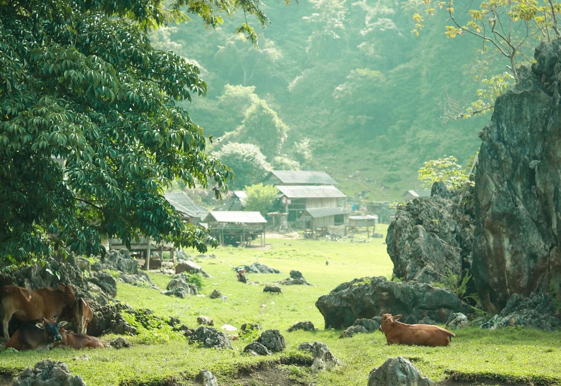 những nơi đẹp như Thụy Sĩ ở Việt Nam