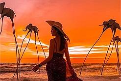 Nên đi Nha Trang hay Phú Quốc – điểm du lịch nào đẹp hơn?