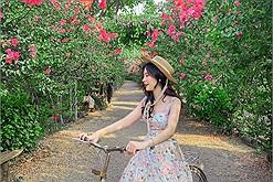 """Hóa nàng thơ ở """"khu rừng nhỏ"""" đẹp như mơ trong lòng Hà Nội"""