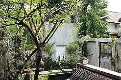 Kiến trúc nhà ở 1 tầng ấn tượng nằm giữa cây xanh, thác nước