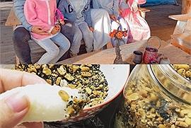 """Lý Hải - Minh Hà dạy con làm muối vừng ở nông trại Đà Lạt, ăn với cơm nắm cứ gọi là """"ngon số zách"""""""