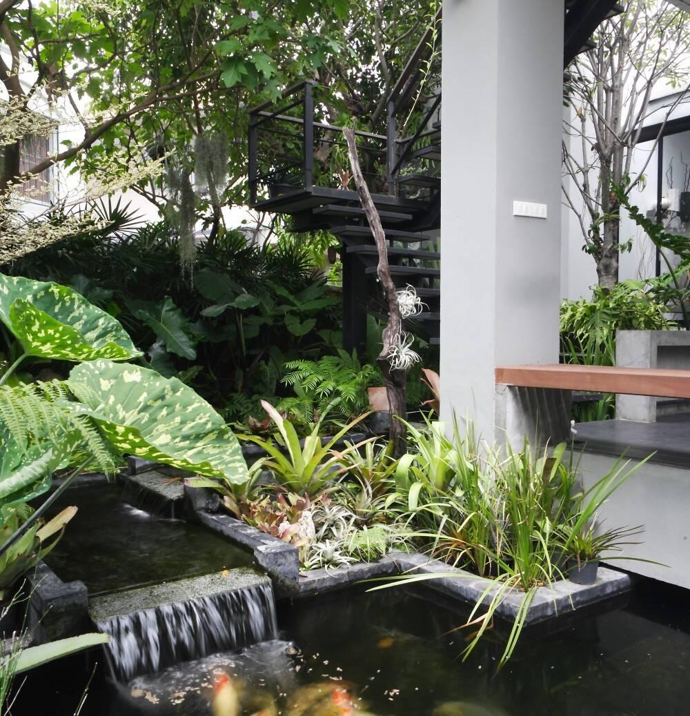 hồ nước trong nhà