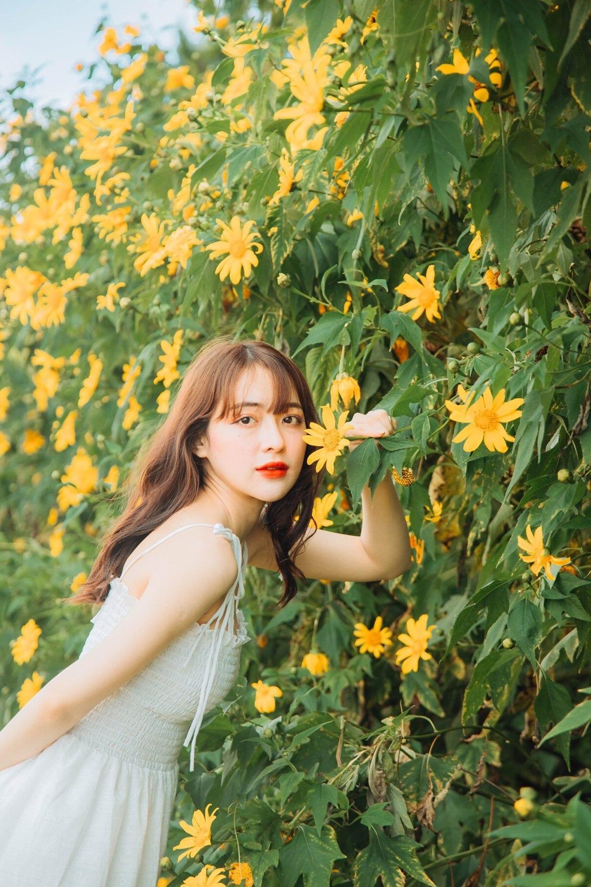 photo 9X mộng mơ đi khắp Việt Nam săn các mùa hoa