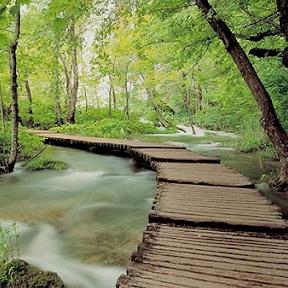 Vườn quốc gia Ba Vì - điểm đến đang gây điên đảo những tín đồ sống ảo