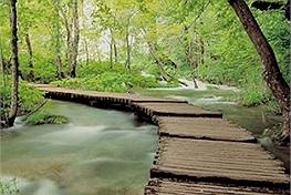 Vườn quốc gia Ba Vì-điểm đến đang gây điên đảo những tín đồ sống ảo