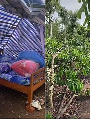 """Về quê cách ly, cô gái được ba mẹ cấp """"nhà vườn"""", ra cắm trại với cà phê, chôm chôm, tạm tránh xa gia đình"""