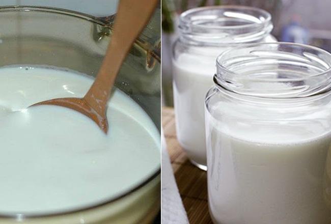 ủ sữa chua