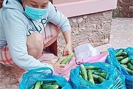 """Bà chủ trọ """"quốc dân"""", chơi lớn nhất Sài Gòn: Giảm 50% tiền nhà, suốt ngày phát rau, gạo, thịt miễn phí cho cư dân"""
