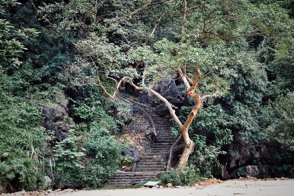 Khám phá Tuyệt tình cốc Ninh Bình
