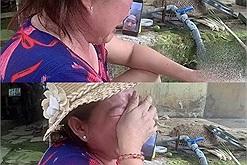 Em gái cười ngất khi mẹ khóc lóc chỉ vì sợ chị ở Sài Gòn bị đói: Mập thế không ăn no phải làm sao