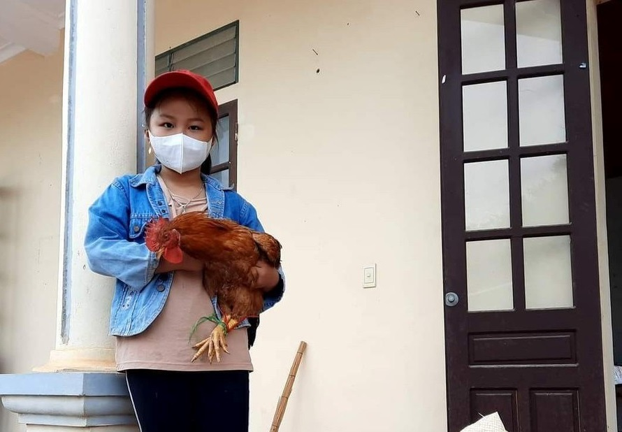 bé gái tiểu học ôm gà đi ủng hộ chống dịch Covid-19