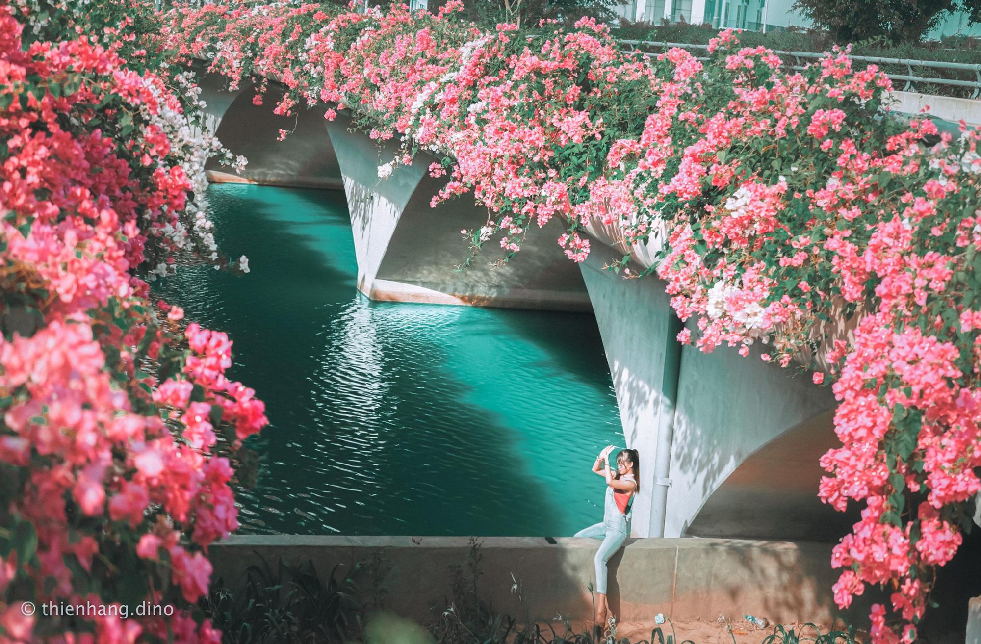 cầu hoa giấy