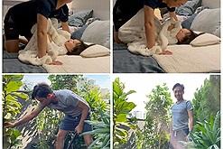 Sáng chăm vườn, chiều tối chăm con, cường Đô la chơi với Suchin gây cười không ngớt cho Đàm Thu Trang